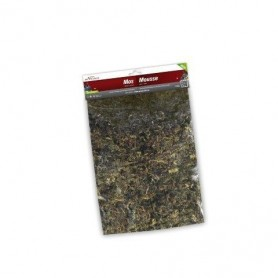 MATERIALE DECORATIVO MUSCHIO VERDE/MARRONE 120G