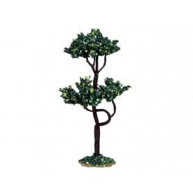 LEMAX BUCKEYE TREE, MEDIUM