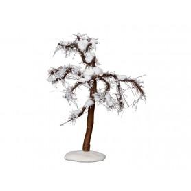 LEMAX WINTER CYPRESS TREE, MEDIUM