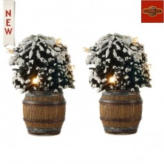 LUVILLE BUXUS BUSH IN BARREL SET OF 2